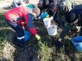 Помощь в уборке урожая